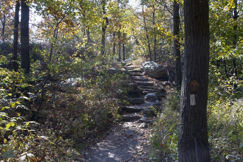 Green Brook Nj >> Sunrise Mountain - Stokes State Forest | njHiking.com