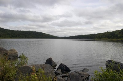 Hank's Pond