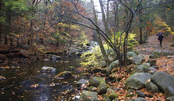 Harriman State Park