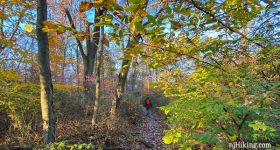 Watchung Reservation Sierra Trail