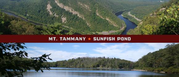 Mt. Tammany and Sunfish Pond