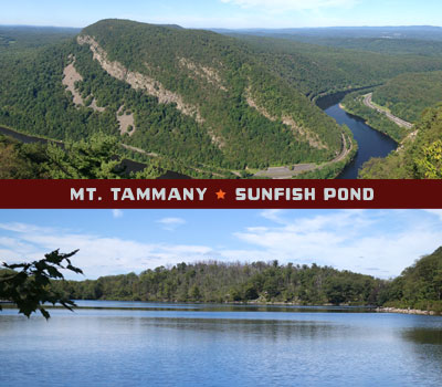 Mt. Tammany and Sunfish Pond
