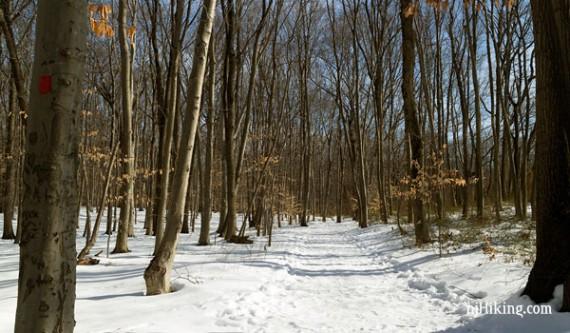 Thompson Park - Middlesex