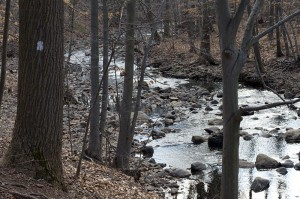 South Mountain Reservation