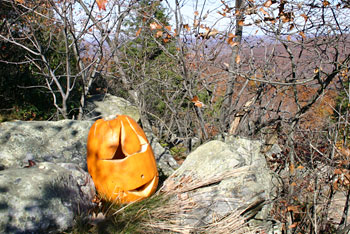 Halloween Hikes