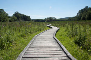 Short Hikes in NJ