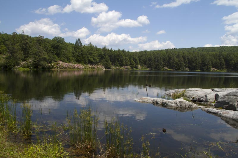 Hemlock Pond