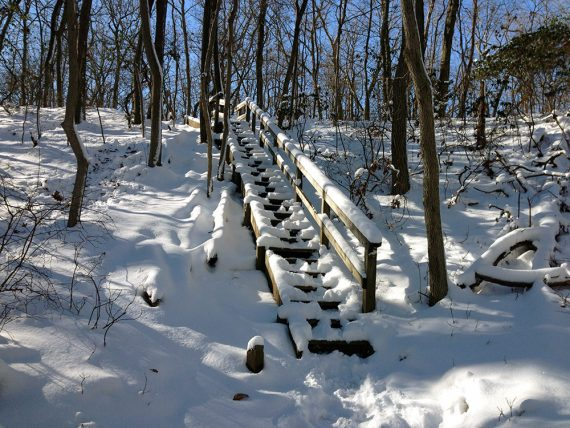 Snow covered trail steps