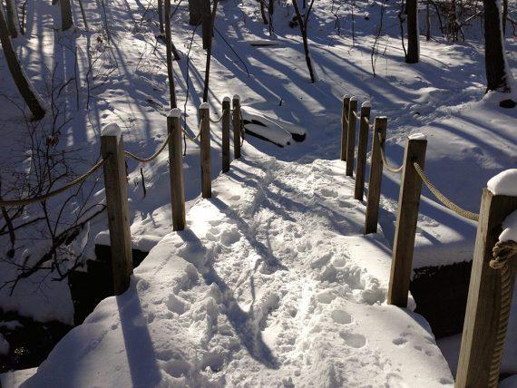 Snow covered trail bridge