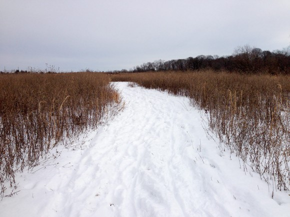 Six Mile Run - Blue Trail