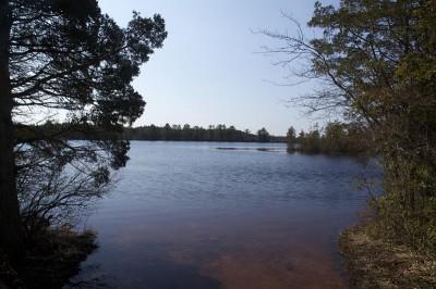 Penn State Forest - Oswego Lake