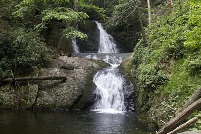 Waterfall at PEEC