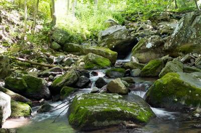 Musconetcong Gorge