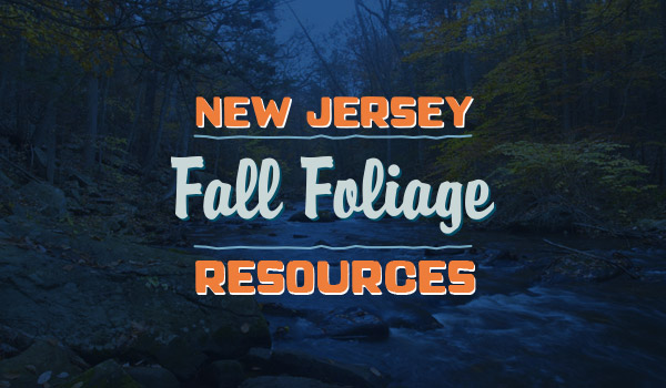 NJ Fall Foliage