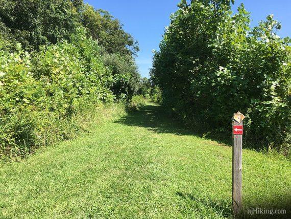 Trail marker along grassy trail