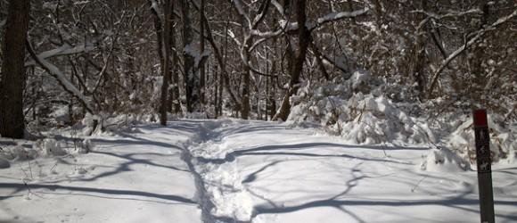Six Mile Run Reservoir – Red Trail