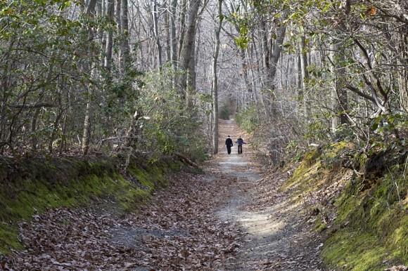 Hartshorne Woods