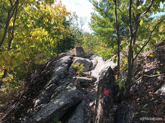 Red blazes on large rocks on the trail