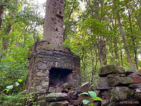 Remains of a stone chimney