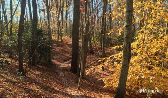 Huber Woods Park