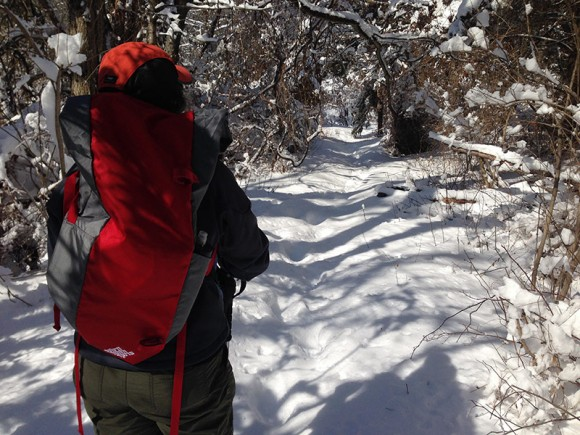 Snowshoe Backpack Bag