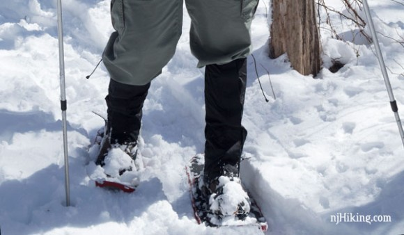 Hiker's feet with snowshoes and leg gaiter on snowy trail