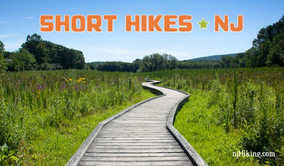 Short Hikes In Nj Trail Maps