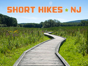 short-hikes-in-nj-300x225