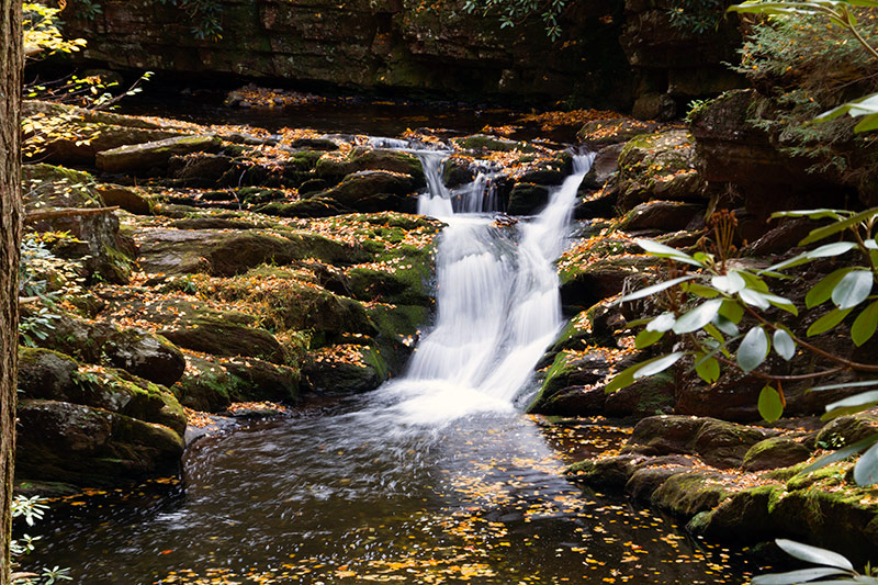 Hiking trail reveals Van Campens Glen Falls - Sussex County