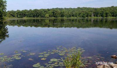 Allamuchy Mountain - Deer Park Pond
