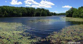 Wawayanda Lake - Pumphouse Trail