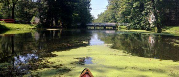 D&R Kayak - Blackwells Mills