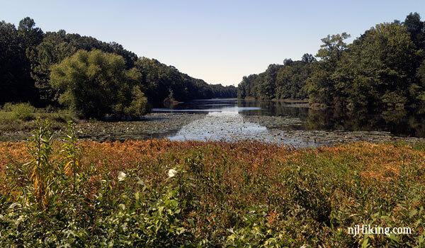 Davidson's Mill Pond Park