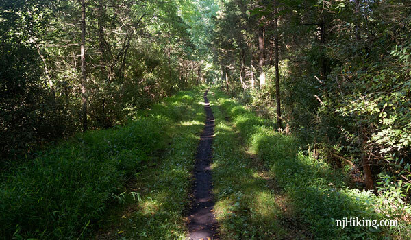 Paulinskill Valley Trail – Warbasse Junction to Old Station