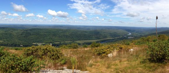 Appalachian Trail - Raccoon Ridge