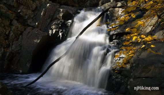 Close up of a waterfall with a branch in it