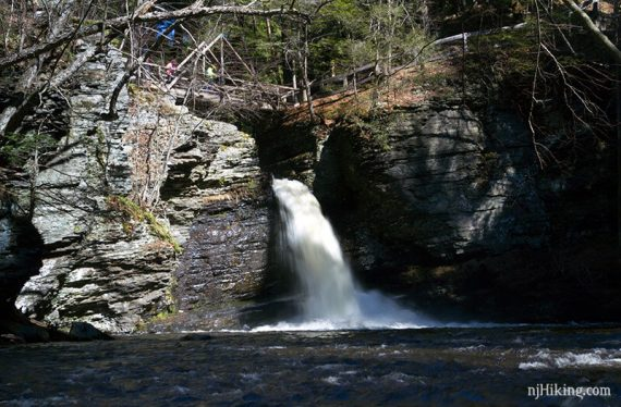 Deer Leap Falls at Childs Park