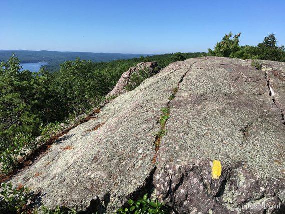 Yellow trail blaze on a large rock slab