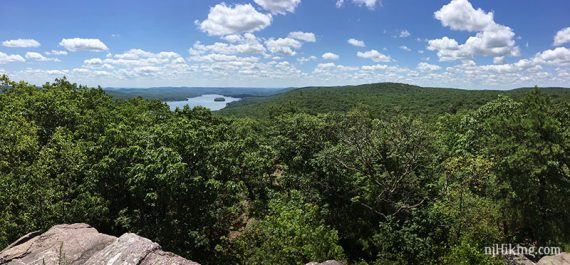 Greenwood Lake seen beyond a large green forest