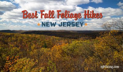 Best Fall Foliage Hikes in New Jersey