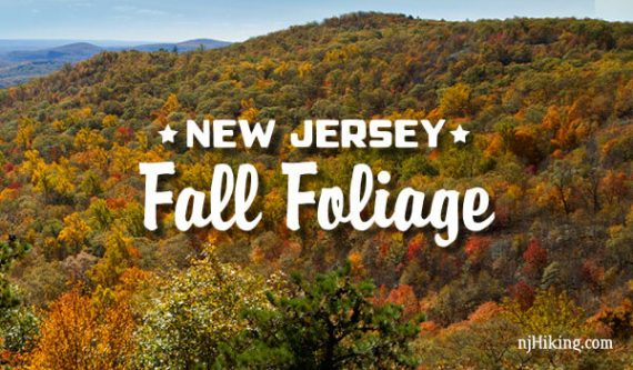 NJ Fall Foliage | njHiking.com