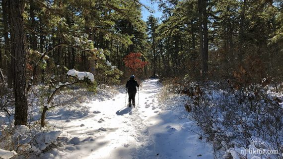 Snowshoeing at Jakes Branch