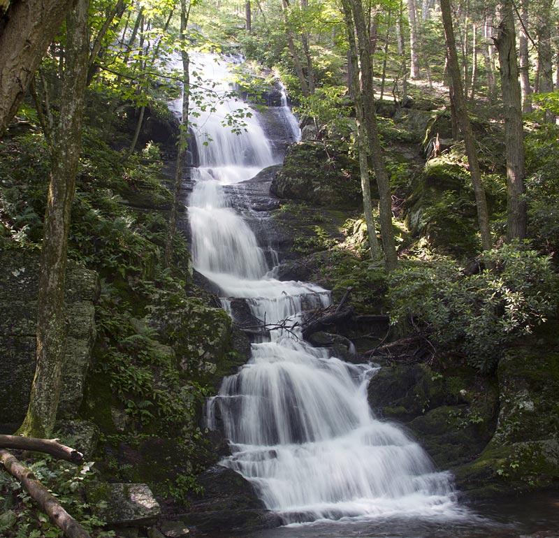 Mill Island Trail Seneca River