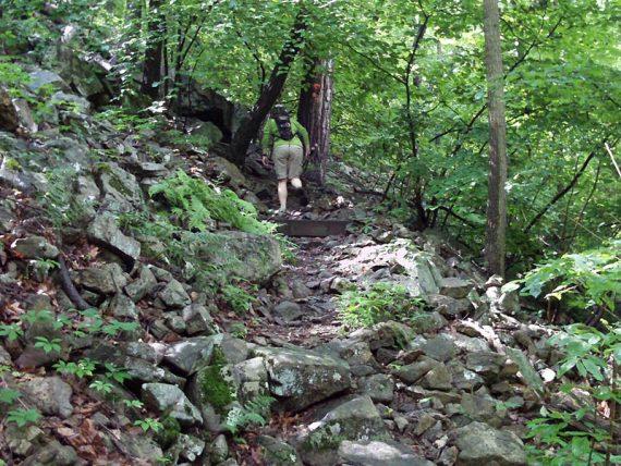 Rocky uphill trail