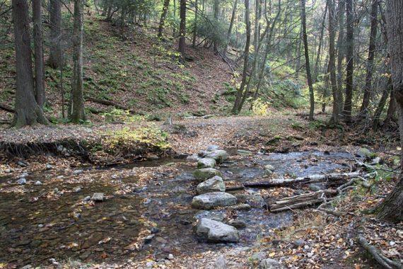 One of several Dunnfield Creek crossings