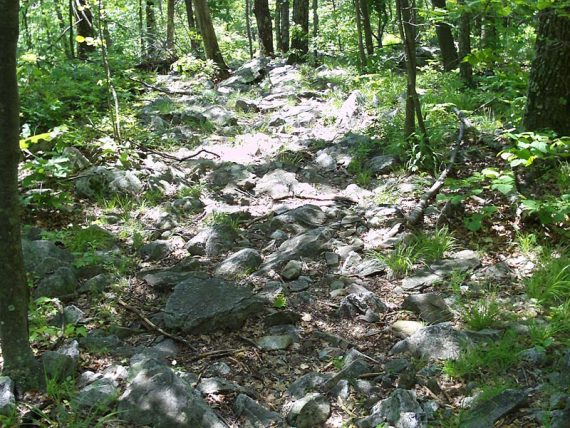 Trail surface filled with rocks