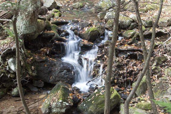 Cascade along Dunnfield Creek Trail