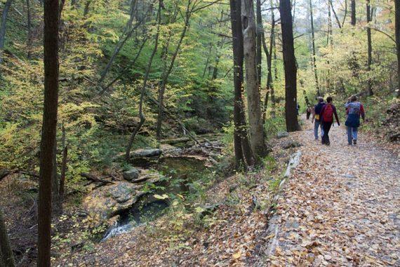 Appalachian Trail; nearing the parking lot