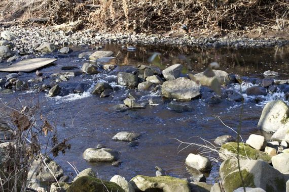 Possibly tricky stream crossing on the Rahway Trail