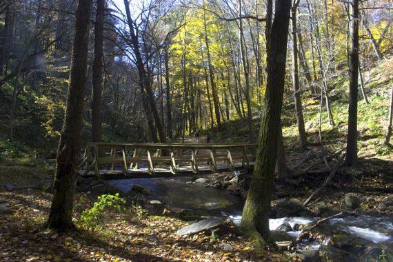 Bridge over Dunnfield Creek